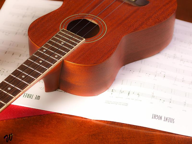 uke anatomy parts of a ukulele coustii. Black Bedroom Furniture Sets. Home Design Ideas