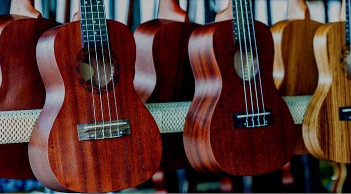 Easy Ukulele Chords For Beginners Coustii