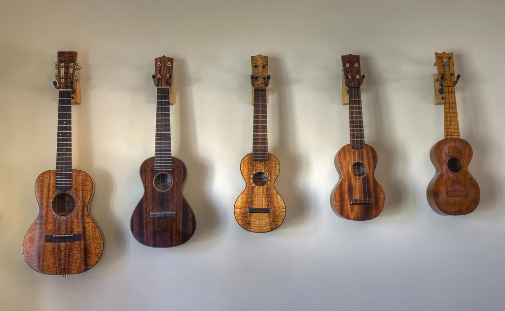 types of ukuleles find the uke for you coustii