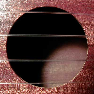 ukulele tuning strings